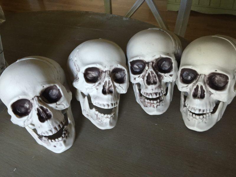 plastic skulls for halloween crafts