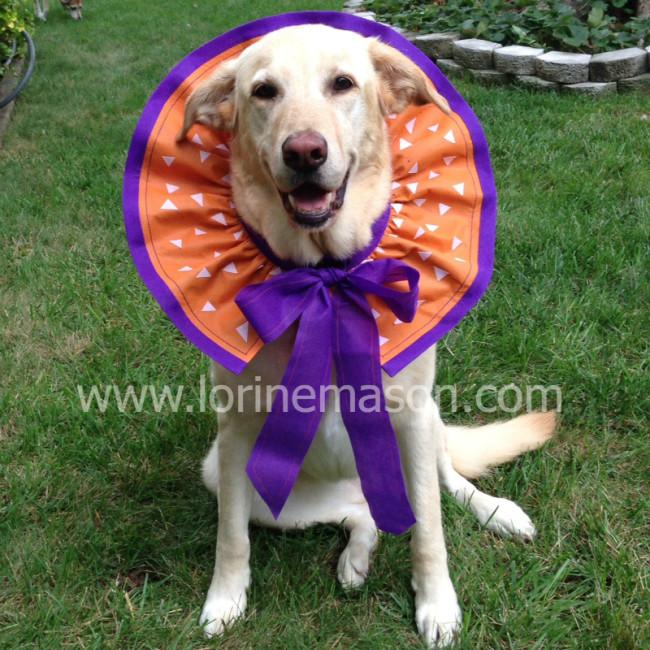 10 - Lorine Mason - Ruffled Dog Collar